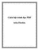Cách bật trình đọc PDF trên Firefox