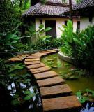 Tạo lối đi trong vườn với một màu xanh mướt