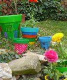 Những màu sắc rực rỡ cho khu vườn