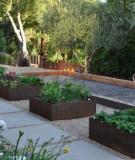 Một số kiểu tạo hình cho khu vườn
