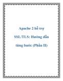 Apache 2 hỗ trợ SSL/TLS: Hướng dẫn từng bước (Phần II)