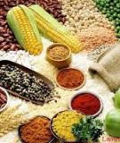Phụ gia bảo quản ngũ cốc