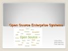 Open Source Enterprise System