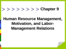 Human Resource Management, Motivation, and Labor- Management Relations
