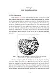 Cơ sở viễn thám-Chương 4
