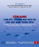 Dự án Hỗ trợ Thương mại Đa phương diện - Cam kết thương mại dịch vụ của Việt Nam trong WTO
