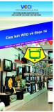 Hệ thống ngắn gọn về WTO và các cam kết gia nhập của Việt Nam - Cam kết WTO về điện tử