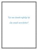 Tại sao doanh nghiệp lại cần email newsletter?