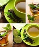 7 loại trà dược trị cảm mạo