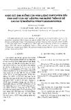 """Báo cáo """" Khảo sát ảnh hưởng của hàm lượng santopren đến tính chất của vật liệu polyme blend trên cơ sở cao su tự nhiên/polypropylen/santopren"""""""