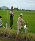 Báo cáo : Xác định dư lượng hóa chất bảo vệ thực vật bằng thiết bị sắc ký khí khối phổ (GC-MS 6890) trong chè trồng tại Thái Nguyên