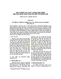 Ảnh hưởng của chất lượng hom giống đến khả năng giâm cành của một số giống chè