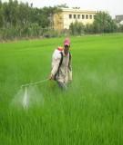 Báo cáo : Thuốc bảo vệ thực vật không được phép sử dụng ở Việt Nam và vấn đề tiêu huỷ chúng
