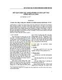 Kết quả chọn tạo, khảo nghiệm và sản xuất thử giống ngô lai LVN45