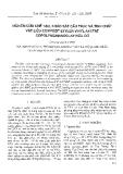 """Báo cáo """" Nghiên cứu chế tạo, khảo sát cấu trúc và tính chất vật liệu compozit etylen vinyl axetat copolyme/nanoclay hữu cơ """""""