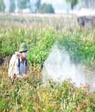 """Báo cáo """" Nghiên cứu tổng hợp chất hoạt động bề mặt ligno sunfonat từ dung dịch thải của công nghiệp sản xuất bột giấy, ứng dụng trong gia công thuốc bảo vệ thực vật """""""