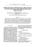 """Báo cáo """" Nghiên cứu chế tạo compozit sinh học trên cơ sở nhựa polyeste không no gia cường bằng mat nứa lai tạo với MAT thủy tinh """""""