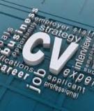 """Nhận biết 6 vấn đề """"đáng ngờ"""" trong CV xin việc"""