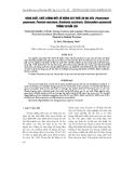 """Báo cáo """"Năng suất, chất lượng một số giống cây thức ăn gia súc (Pennisetum perpureum, Panicum maximum, Brachiaria ruziziensis, Stylosanthes guianensis) trồng tại Đắk Lắk  """""""
