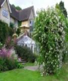 Tạo một không gian nhà vườn hoàn hảo