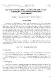 """Báo cáo """" Nghiên cứu tối ưu môi trường lên men chủng Steptomyces Orientalis 4912 sinh Vancomyxin"""""""