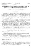 """Báo cáo """" ảnh hưởng của Butachlor lên hệ thống Oxy hóa của cá trắm cỏ (Ctenopharyngodon idellus)"""""""