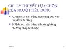 Chương 3 LÝ THUYẾT LỰA CHỌN CỦA NGƯỜI TIÊU DÙNG