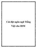Cài đặt ngôn ngữ Tiếng Việt cho IDM