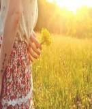 Truyện ngắn Tìm một tình yêu xé hình tim vỡ