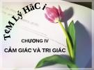 Bài giảng Tâm lý học - Chương 4 Cảm giác và tri giác - GV. Nguyễn Xuân Long