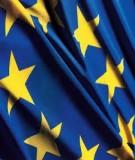 Báo cáo: Một số vấn đề chính trị nổi bật của Liên minh Châu Âu (EU) giai đoạn 2000-2010