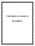 Cách kiểm tra website có bị Sandbox.