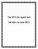 Tip SEO cho người mới bắt đầu vào năm 2013