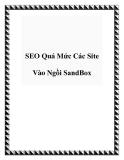 SEO Quá Mức Các Site Vào Ngồi SandBox