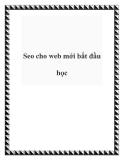 Seo cho web mới bắt đầu học