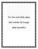 Tư vấn cách khắc phục khi website bị Google phạt (penalty)