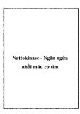 Nattokinase - Ngăn ngừa nhồi máu cơ tim