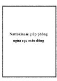 Nattokinase giúp phòng ngừa cục máu đông