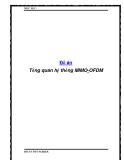 Đồ án Tổng quan hệ thống MIMO-OFDM