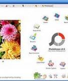 Cách dùng Photoscape: Làm mờ hậu cảnh trong Photoscape