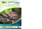 Các loài rùa cạn và rùa nước ngọt Việt Nam
