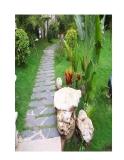 Những vị trí cần lưu ý khi thiết kế biệt thự vườn