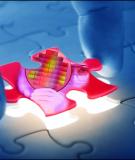 Cực tiểu hóa thời gian trễ trung bình trong một mạng hàng đợi bằng giải thuật di truyền.