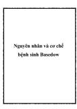 Nguyên nhân và cơ chế bệnh sinh Basedow
