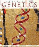 Các yếu tố làm ảnh hưởng đến kiểu di truyền