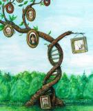 Tái bản của các bộ gene RNA