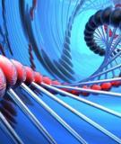 Nguồn gốc và cơ chế phân tử của ung thư