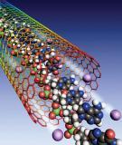 Những cấu trúc chứa DNA trong tế bào