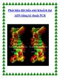 Phát hiện đột biến nhờ Khuếch đại ADN bằng kỹ thuật PCR