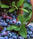 7 loại rau quả giàu dinh dưỡng và chất chống oxy hóa, tốt cho chị em